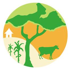 Instituto de Investigação Agraria de Moçambique (IIAM)